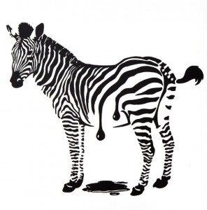 Zebra frisch gestrichen