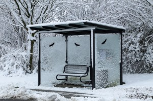 Bus stop on a winter snowy day